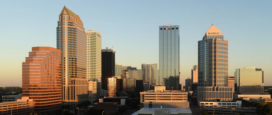 Tampa Skyline 1
